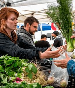 biologische groente kopen
