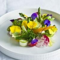 westlandse groentensalade