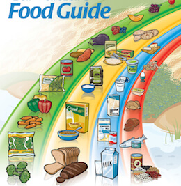 Canadese Food Guide