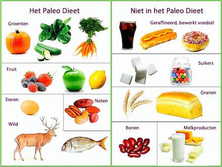 High Glucose Paleo Foods